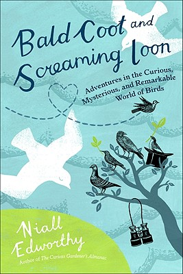 Bald Coot and Screaming Loon: Adventures in the Curious, Mysterious and Remarkable World of Birds - Edworthy, Niall