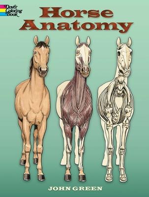 Horse Anatomy - Green, John