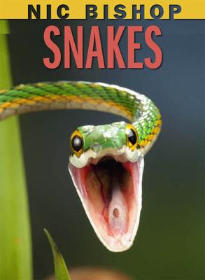 Snakes - Bishop, Nic