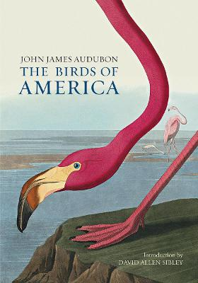 The Birds of America - Audubon, John James