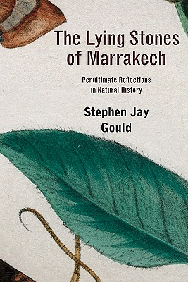 The Lying Stones of Marrakech: Penultimate Reflections in Natural History - Gould, Stephen Jay