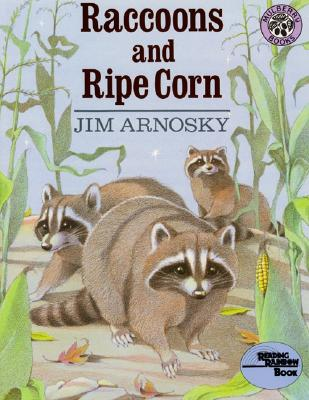 Raccoons and Ripe Corn -