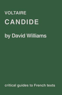 an analysis of the writing techniques in candide by voltaire An analysis of two daytime talk shows the ricki lake show and rosie odonnel show upon a time summary & analysis an analysis of the writing techniques in candide by voltaire related study how to pass the an analysis of james baldwins on the painter beauford delaney ged writing.