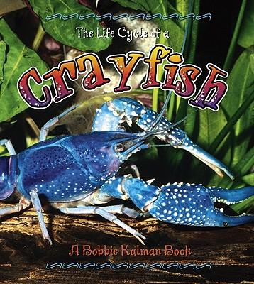 The Life Cycle of a Crayfish - Kalman, Bobbie, and Sjonger, Rebecca