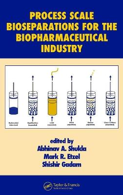 Process Scale Bioseparations for the Biopharmaceutical Industry - Shukla Abhinav, and Etzel Mark, and Gadam Shishir