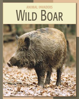 Wild Boar - Somervill, Barbara A, and Gray, Susan H