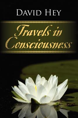 Travels in Consciousness - Hey, David