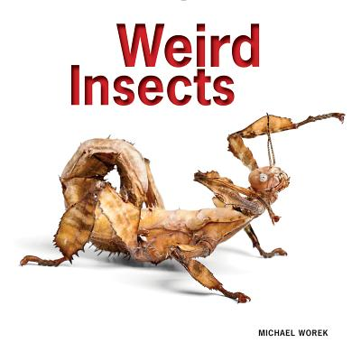 Weird Insects - Worek, Michael, and Marshall, Stephen A