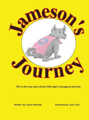 Jamesons Journey - Metcalfe, Alison