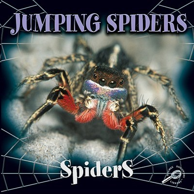 Jumping Spiders - Cooper, Jason
