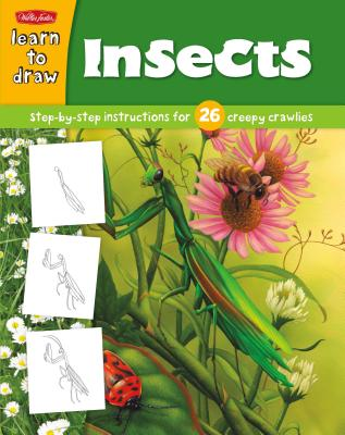 Learn to Draw Insects -