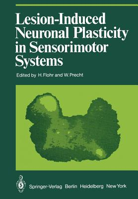 Lesion-Induced Neuronal Plasticity in Sensorimotor Systems - Flohr, H (Editor)