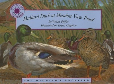 Mallard Duck at Meadow View Pond - Pfeffer, Wendy