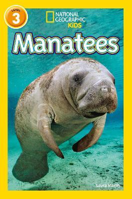 Manatees - Marsh, Laura