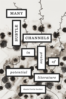 Many Subtle Channels: In Praise of Potential Literature - Levin Becker, Daniel