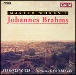 Masterworks, Vol. 1: Johannes Brahms