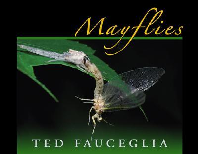 Mayflies - Fauceglia, Ted