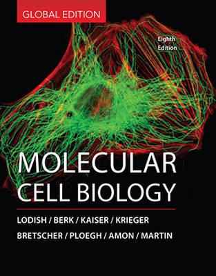 Molecular Cell Biology - Berk, Arnold, and Kaiser, Chris A., and Lodish, Harvey