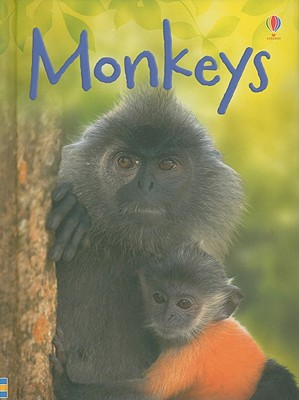 Monkeys - Bowman, Lucy