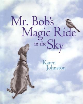 Mr. Bob's Magic Ride in the Sky -