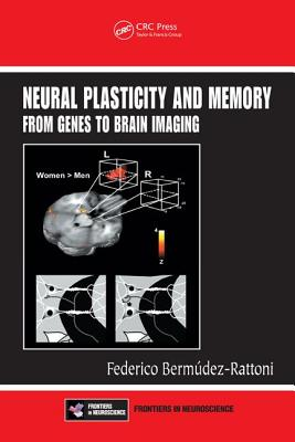 Neural Plasticity and Memory: From Genes to Brain Imaging - Bermudez-Rattoni, Federico (Editor)