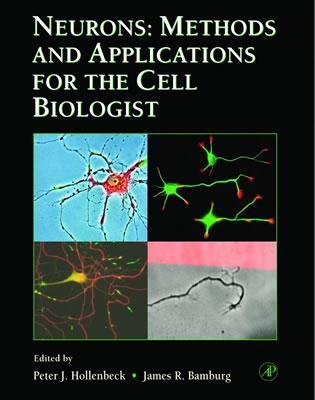 Neurons: Methods in Cell Biology, Vol 71 Neurons - Methods and Applications for the Cell Biologist v. 71 - Hollenbeck, Peter J., and Bamburg, James R.