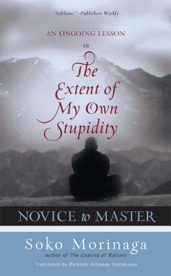 Novice to Master: An Ongoing Lesson in the Extent of My Own Stupidity - Morinaga, Soko
