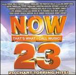 Now That's What I Call Music! 23