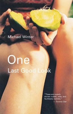 One Last Good Look - Winter, Michael