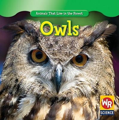 Owls - Macken, JoAnn Early