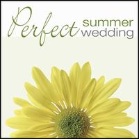 Perfect Summer Wedding -