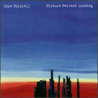 Picture Perfect Morning - Edie Brickell