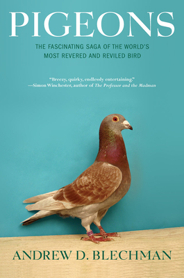 Pigeons: The Fascinating Saga of the World's Most Revered and Reviled Bird - Blechman, Andrew D