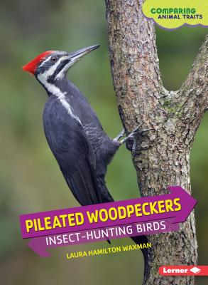 Pileated Woodpeckers: Insect-Hunting Birds - Waxman, Laura Hamilton