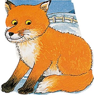 Pocket Fox -