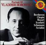 Portrait of Vladimir Horowitz
