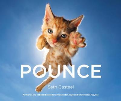 Pounce - Casteel, Seth