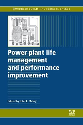 Power Plant Life Management and Performance Improvement - Oakey, John E. (Editor)
