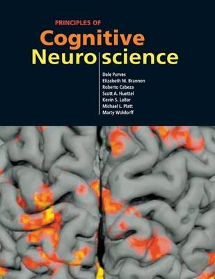 Neuroscience book by dale purves editor 6 available editions principles of cognitive neuroscience fandeluxe Choice Image
