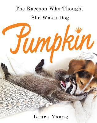 Pumpkin: The Raccoon Who Thought She Was a Dog - Young, Laura