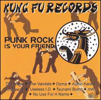 Punk Rock Is Your Friend - Various Artists