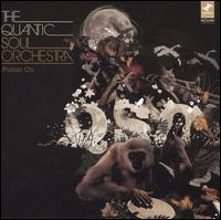 Pushin On - Quantic Soul Orchestra