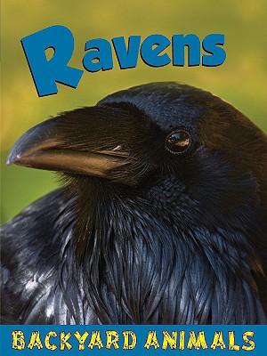 Ravens - Webster, Christine