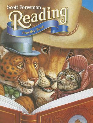 Reading 2000 Practice Book with Selection Tests Grade 3.2 -