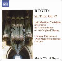 Reger: Organ Works, Vol. 6 - Martin Welzel (organ)