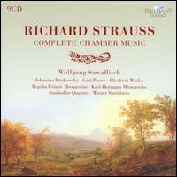 Richard Strauss: Complete Chamber Music - Anna Kandinskaia (violin); Barton Weber (piano); Begona Uriarte (harmonium); Begona Uriarte (piano); Elisabeth Woska;...