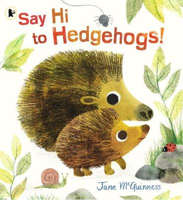 Say Hi to Hedgehogs! -