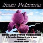 Scenic Meditations