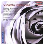 Schönberg, Webern, Berg: The Waltz Arrangements