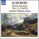 Schubert: Piano Sonatas Nos. 2, 3 & 6